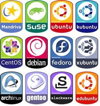 Sistema operativos propios de  países o gobiernos.
